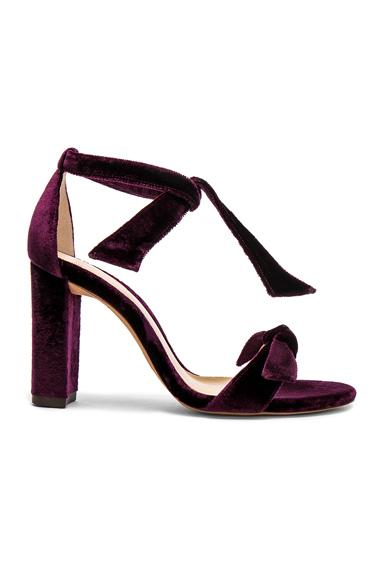 Velvet Clarita Block Heels