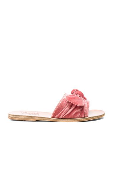 Velvet Taygete Bow Sandals
