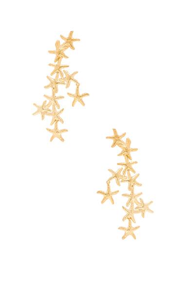 Salacia Earrings