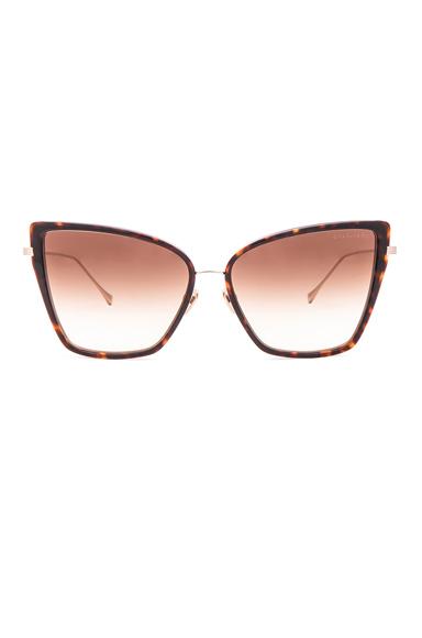Sunbird Sunglasses