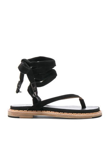 Suede Zinnia Sandals