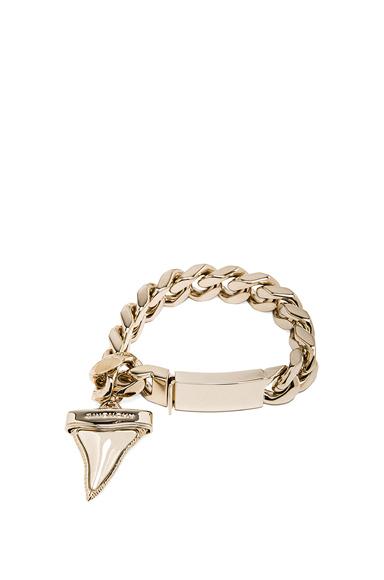 Shark Tooth Bracelet
