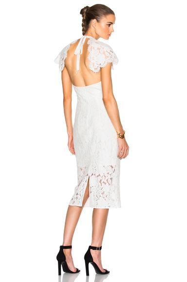 Affinity Midi Dress