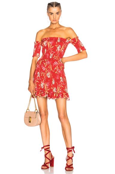 Corsair Smocked Flutter Dress